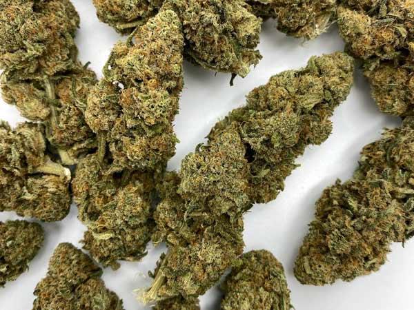Vendita-cannabis-light-a-basso-contenuto-di-thc
